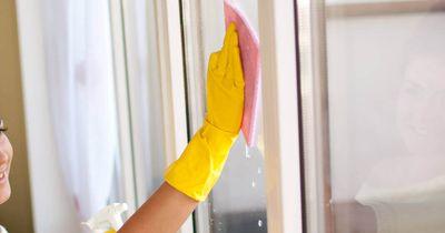 Fenster putzen - so wird es endlich streifenfrei