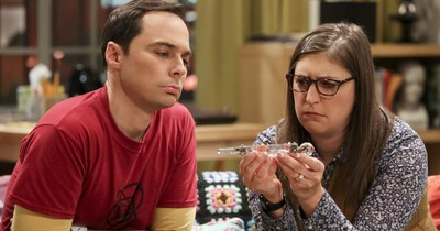 Fünf krasse Fakten über The Big Bang Theory!