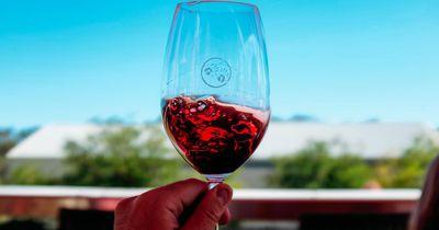 Das passiert in deinem Gehirn, wenn du Wein trinkst