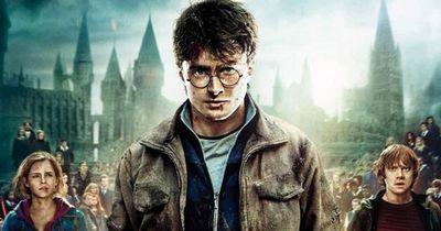 """Das ist der Grund, warum """"Onkel Vernon"""" seinen Neffen """"Harry Potter"""" so hasst"""