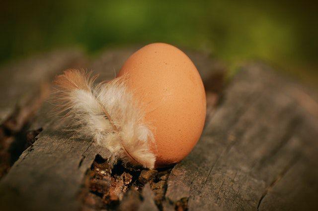 Deshalb werden Eier im Supermarkt nicht gekühlt
