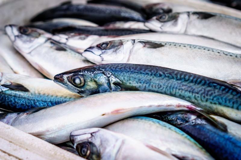 Fischgericht, das Leberkrebs auslöst