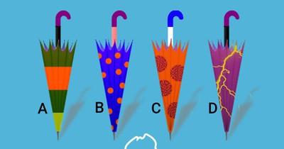 Welcher Schirm ist meiner?