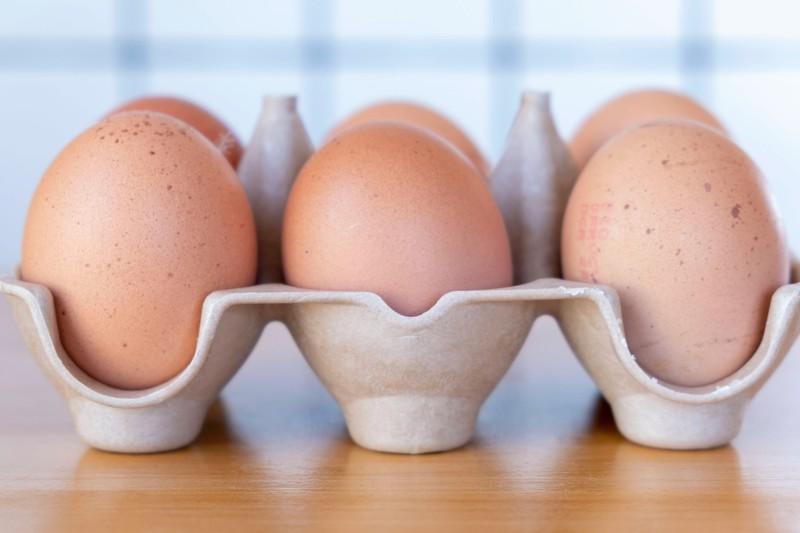 Eier verfügen über einen natürlichen Schalenschutz