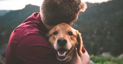 Mag dich dein Hund? Das sind die Anzeichen