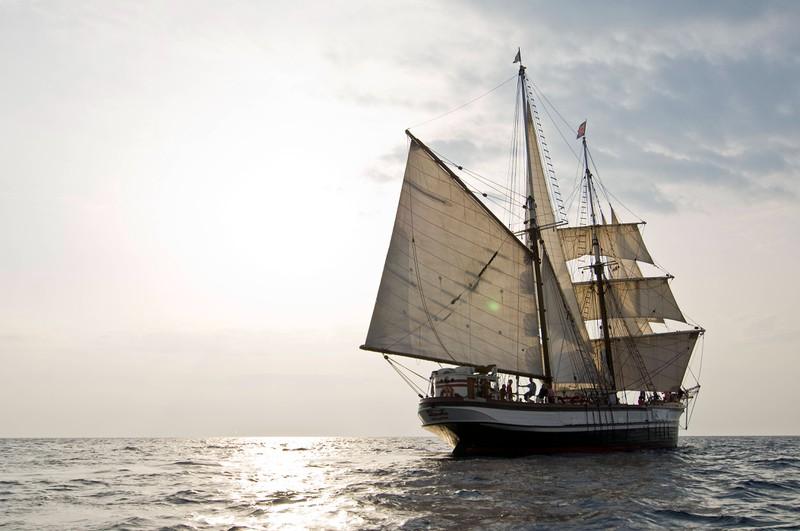 Niemand weiß bis heute, was mit der Besatzung der Mary Celeste passiert ist.