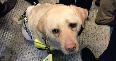 Trotz Nachfrage: Blindem wird in Bahn Sitz verwehrt