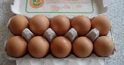 Gesundheitsgefahr bei Eierkartons