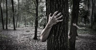 Die 10 gruseligsten Dinge, die Menschen im Wald passiert sind