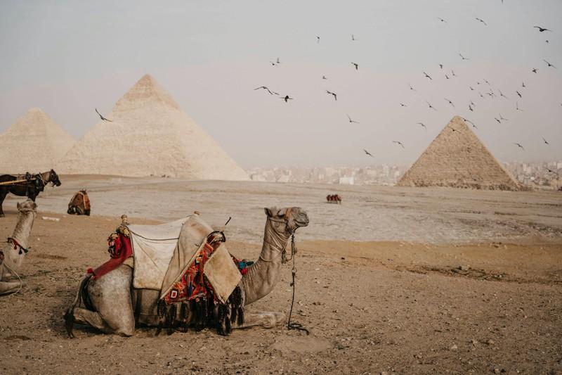 Ägypten ist für seine Pyramiden bekannt, doch im Sudan kommen sie noch häufiger vor.