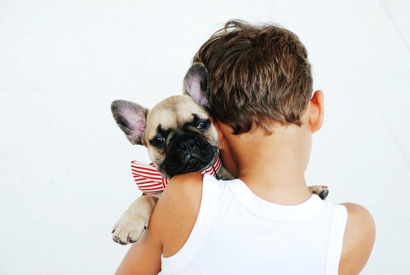 Dieses Bild zeigt ein Kind mit einem Hund.