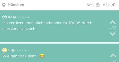 Jodler verdient monatlich 1.000 Euro nebenher durch Ameisenzucht