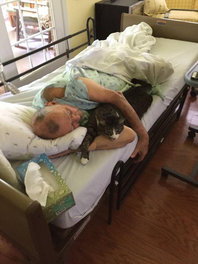 Mann im Hospiz-Bett