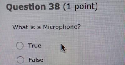 Fragen in Tests, die jeden Schüler verzweifeln lassen würden