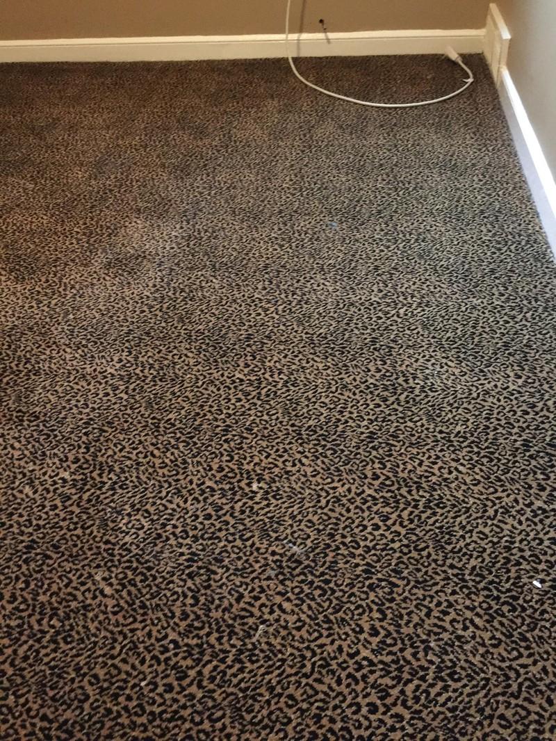 Maklerfoto eines Teppichs mit Leopardenprint