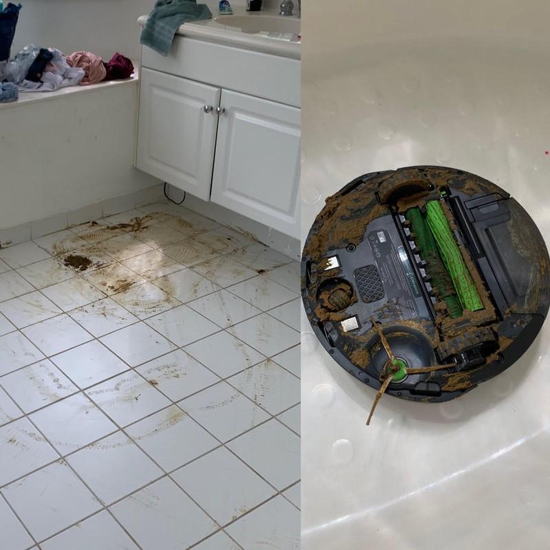 Der Staubsaugerroboter hat die Wohnung schmutziger gemacht, weil er durch Hundekot gefahren ist - ein echter Fail!