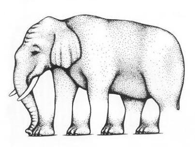 Elefant, dessen Beinanzahl einen verwirrt