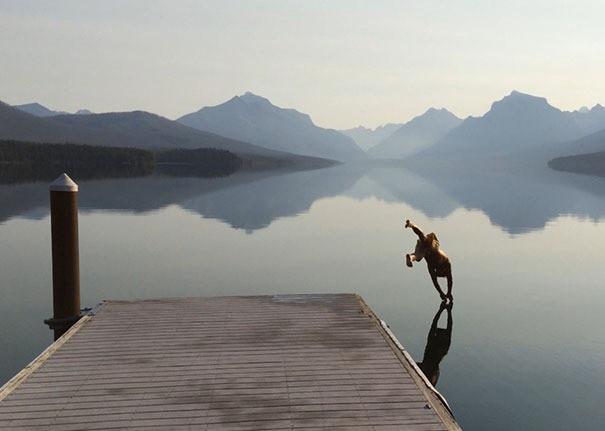Eine Frau springt ins Wasser und bevor sich das Wasser bricht, wird sie fotografiert.