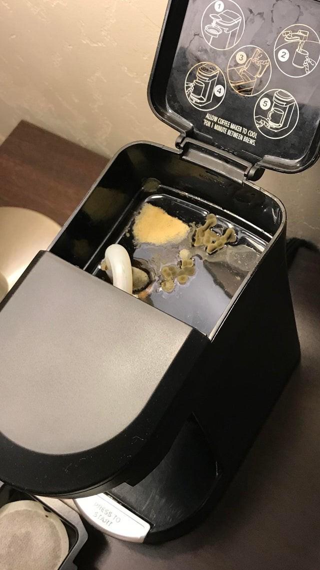 Die Kaffeemaschine in einem Hotelzimmer ist übersäht von Pilzen.