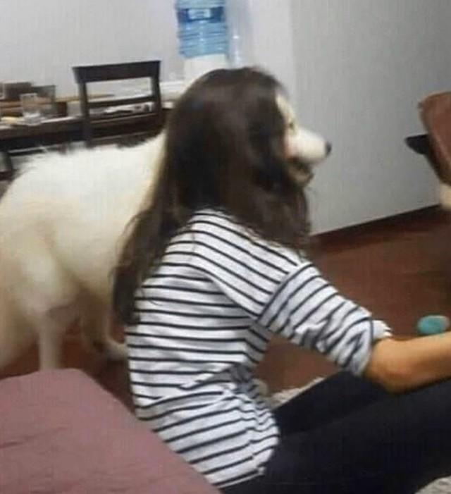 Bei dem Bild sieht es so aus, als hätte die Frau den Kopf eines Hundes