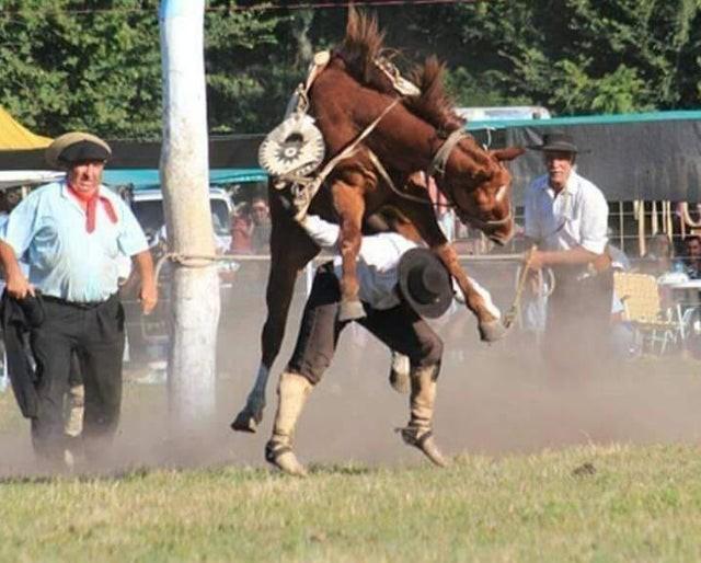 Das Bild wurde im richtigen Moment geschossen, sodass es aussieht, als würde das Pferd auf dem Menschen reiten