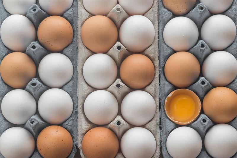 Eier eignen sich nicht dazu eingefroren zu werden.
