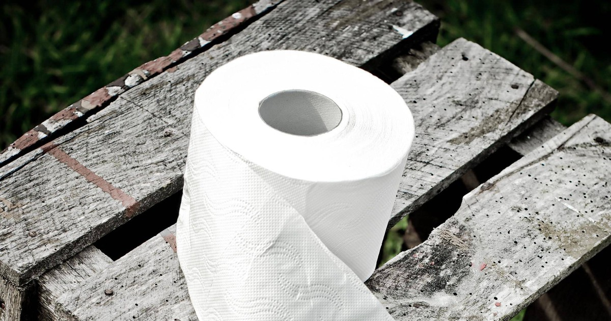 Toilettenpapier selber machen: So einfach geht's