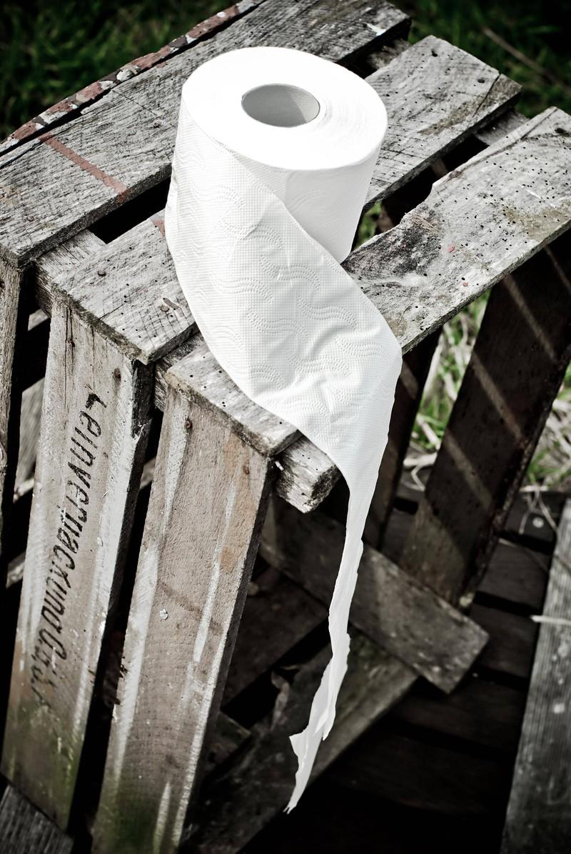 Toilettenpapier ist momentan das Objekt der Begierde. So kannst du Toilettenpapier ganz leicht selber machen.
