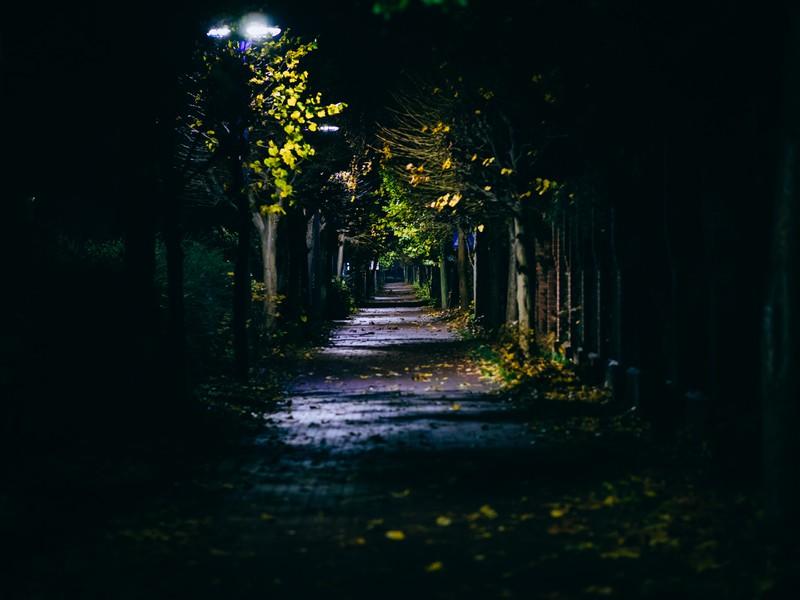 Vor allem nachts bei einem Spaziergang, hat man manchmal komische Begegnungen.