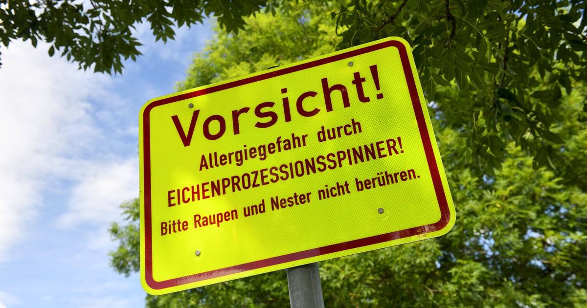 10 Schilder, die zeigen, dass du in Deutschland bist