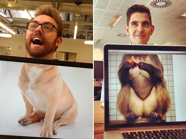 Jede/r im Büro kriegt spontan einen eigenen Tierkörper.