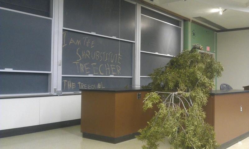 Ein Foto, das den Vertretungslehrer darstellt, der ein Baum ist