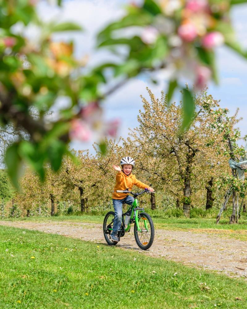 Ein Kind, das alleine Fahrradfahren lernen musste