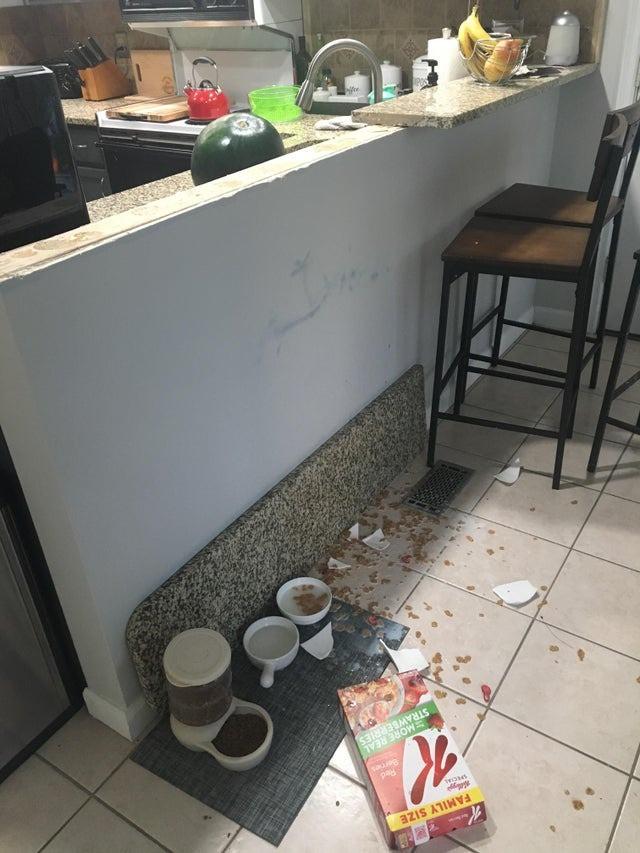 Die Person hatte einen schlechten Start in den Tag, weil das Essen hingefallen ist