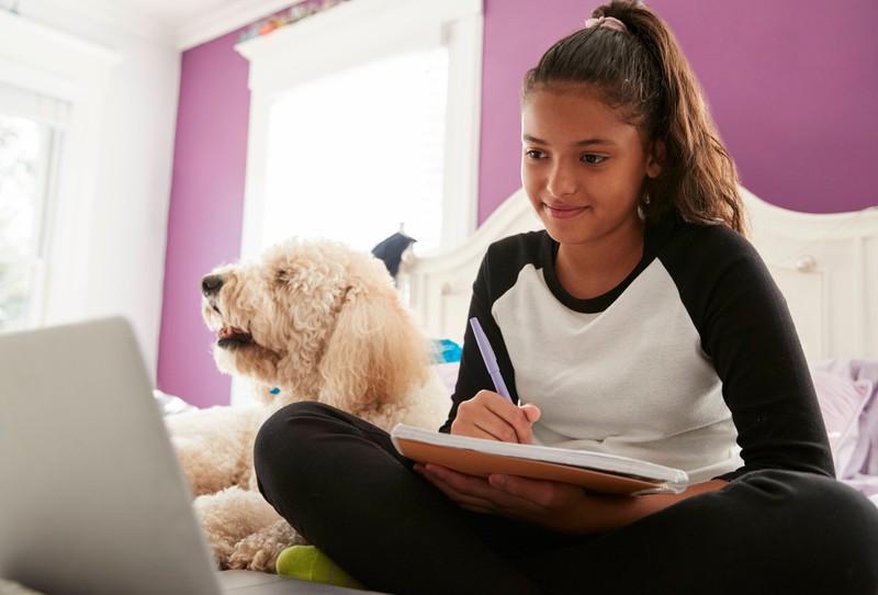 """""""Der Hund hat die Hausaufgaben gefressen"""" als Ausrede"""