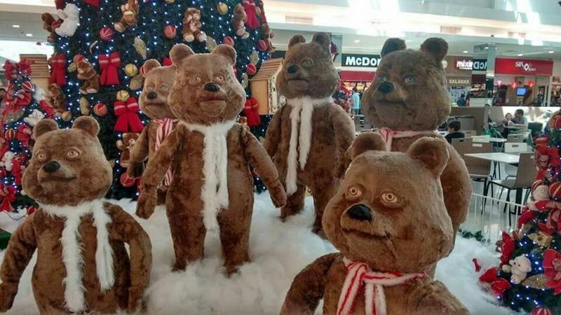 Die Bären sind super lustig