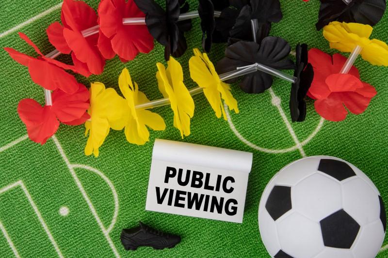 Public Viewing: Diese Facts solltest du kennen